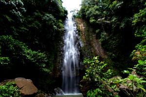 Img_5054_waterfall_hosei_small