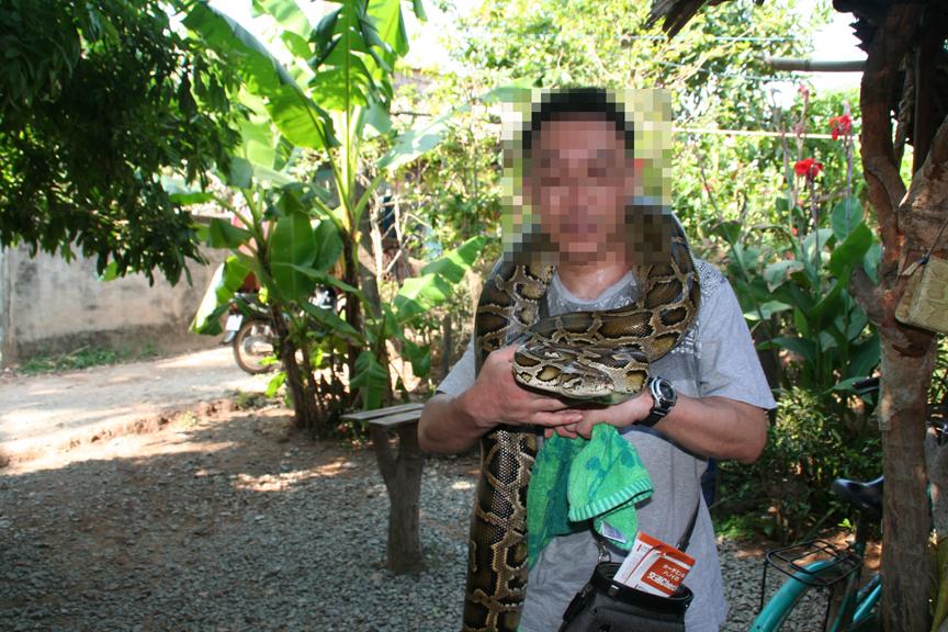 私は蛇OK